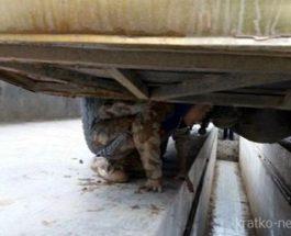 Дети под автобусом