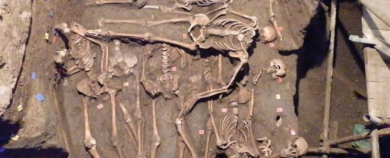 скелеты захоронение