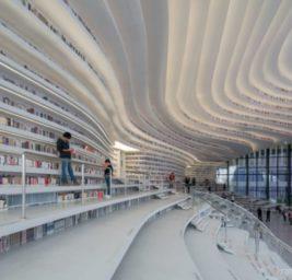 Ocean of Books