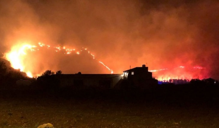 Майорка лесной пожар