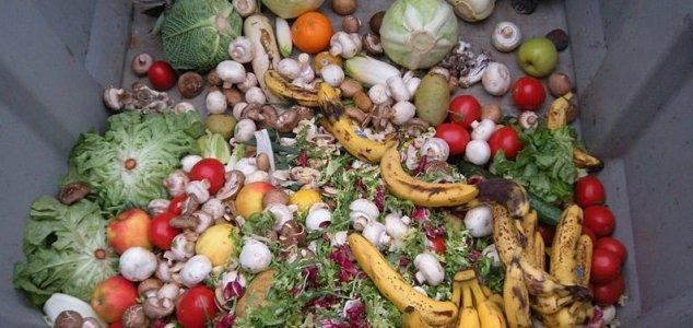 мусор пища
