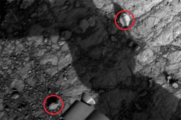 раковины марс