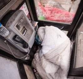 Бездомный в будке