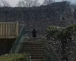 Замок Фарнборо