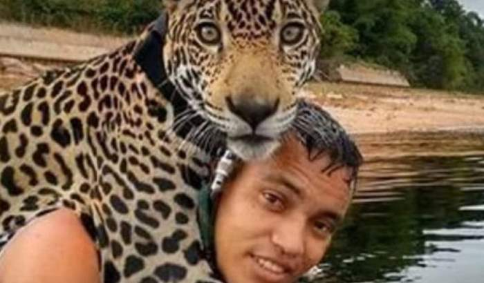 Ягуар Бразилия