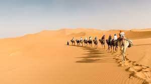 Сахара пустыня