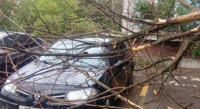 Нижний Новгород пострадал от сильного урагана