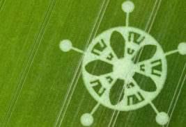 круг на поле