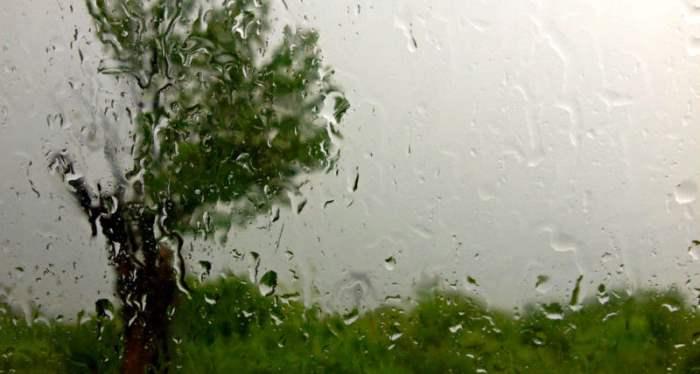румыния дожди