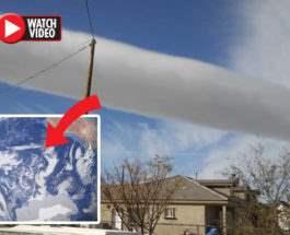 сигарообразные облака