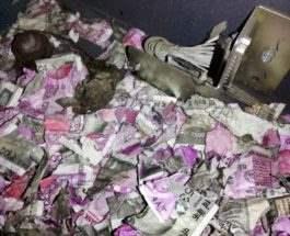 rat in an ATM