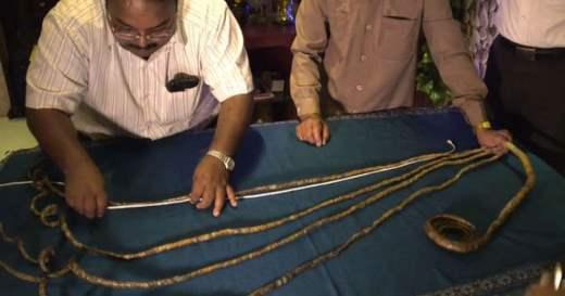 Индиец ногти