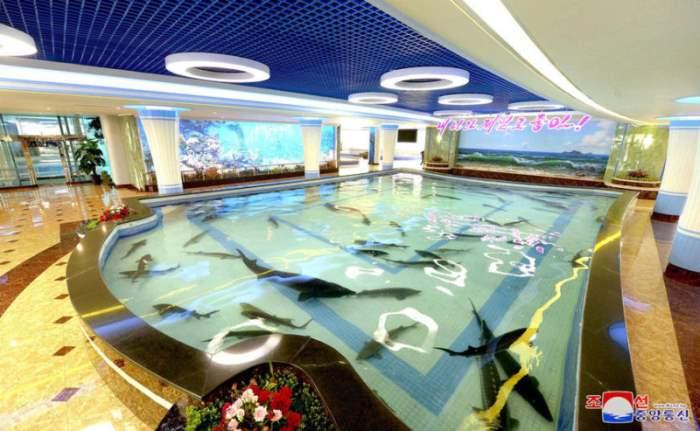 рыбный ресторан Пхеньян