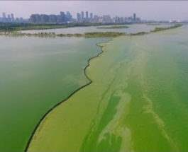 Китай озеро