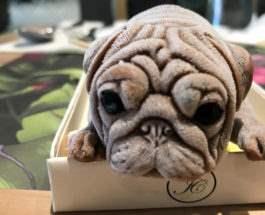 Мороженое в форме щенка