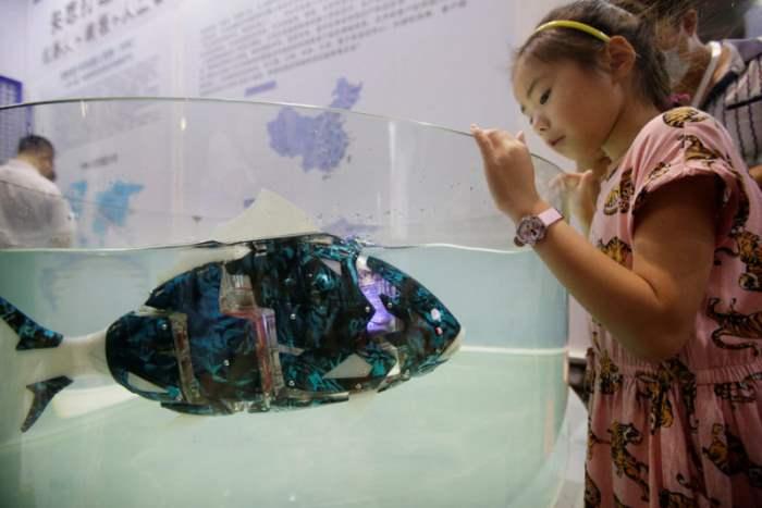 рыба робот