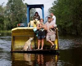 После урагана «Флоренс»