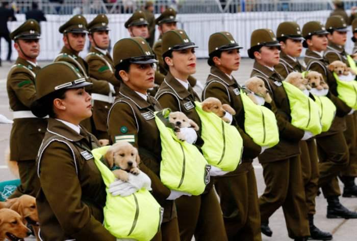 Чилийские полицейские