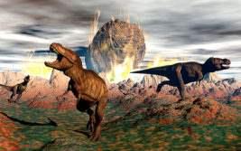 вымирание видов