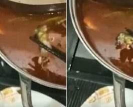 крыса в супе