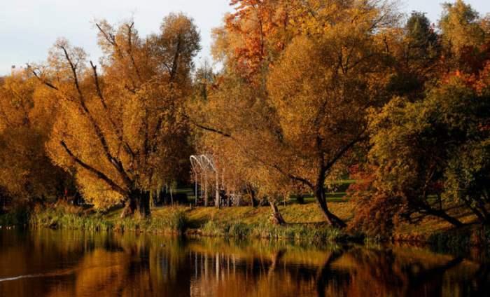 Осенний день в парке