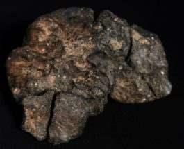 лунный метеорит