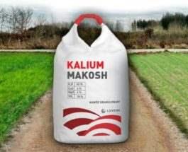 makosh