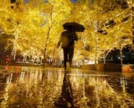Дождливые осенние выходные в Манхэттене.