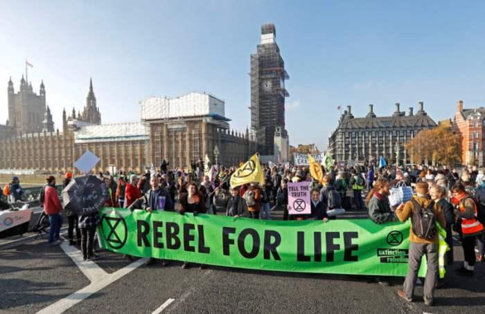 Протест экологов