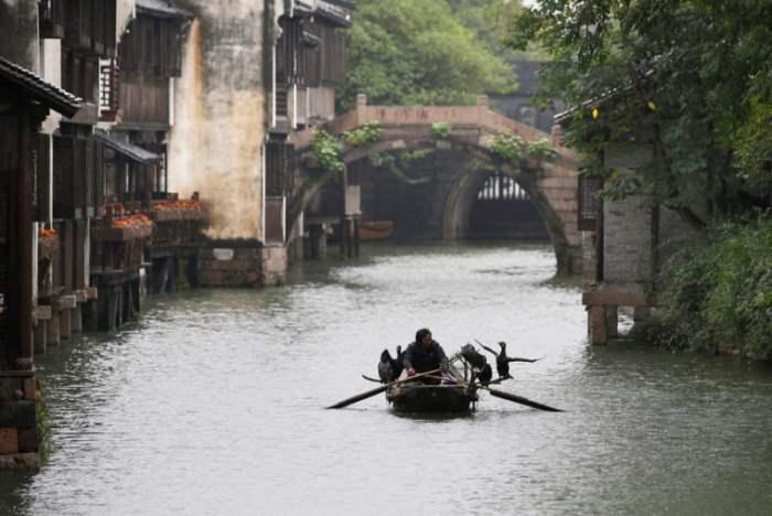 Рыбак в провинции Чжэцзян, Китай.
