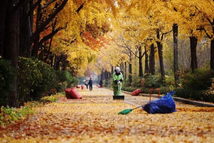 в Сеуле, Южная Корея