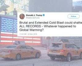 трамп холод