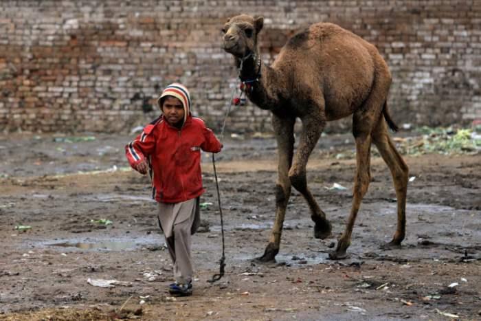 Пакистанский мальчик