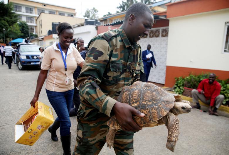 Офицер Службы охраны дикой природы