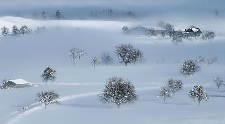 Заснеженный пейзаж