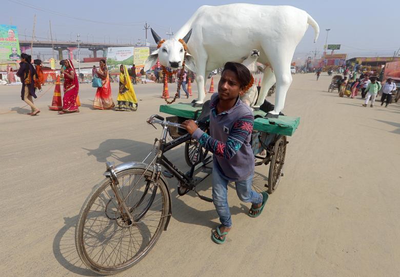 Мужчина перевозит точную копию коровы