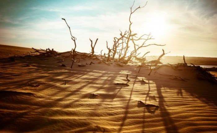 глобальное потепление климат