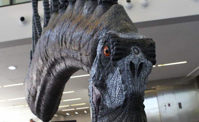 неизвестный вид травоядных динозавров