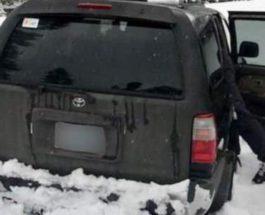 Попавший в снежную ловушку
