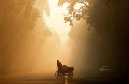 Человек за рулем рикши