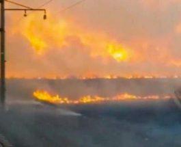пожары в Приморском крае России