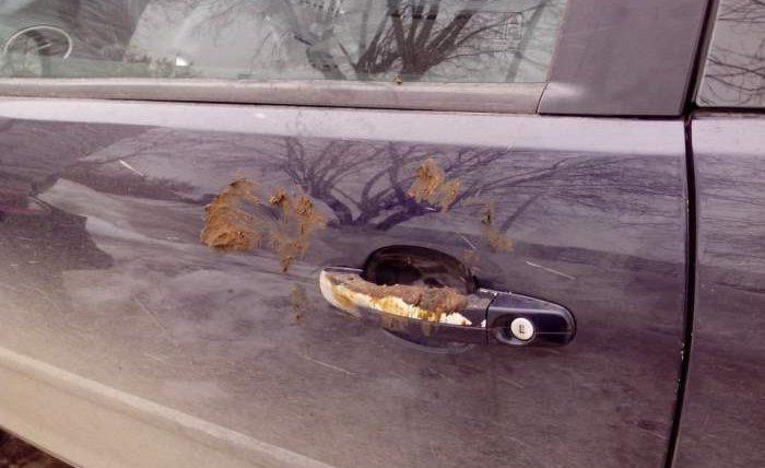 ручки машины говно