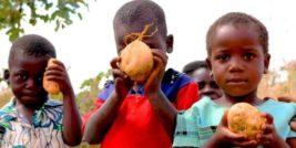 Африка голод