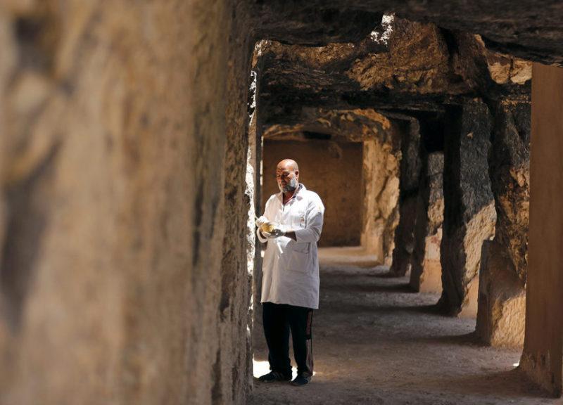 Египетский археолог