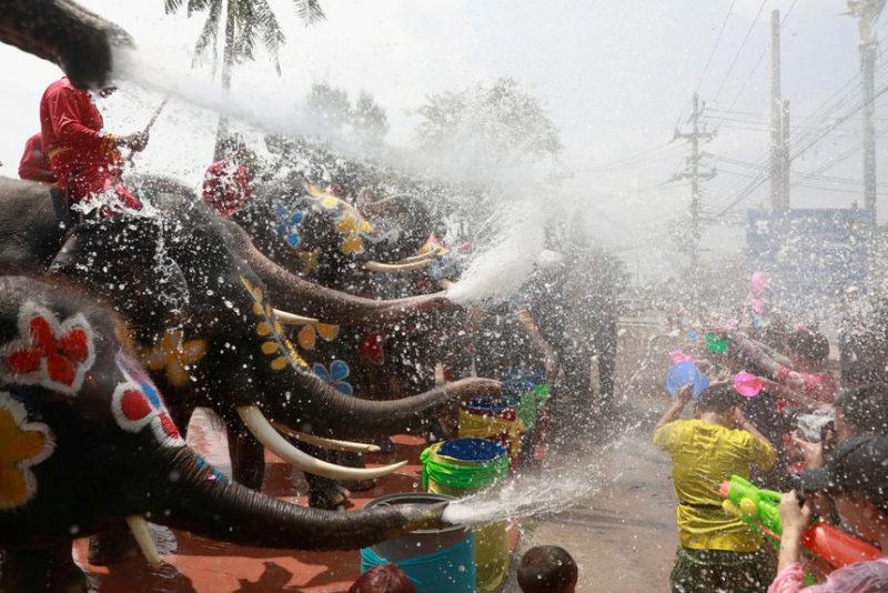 Момент водного фестиваля