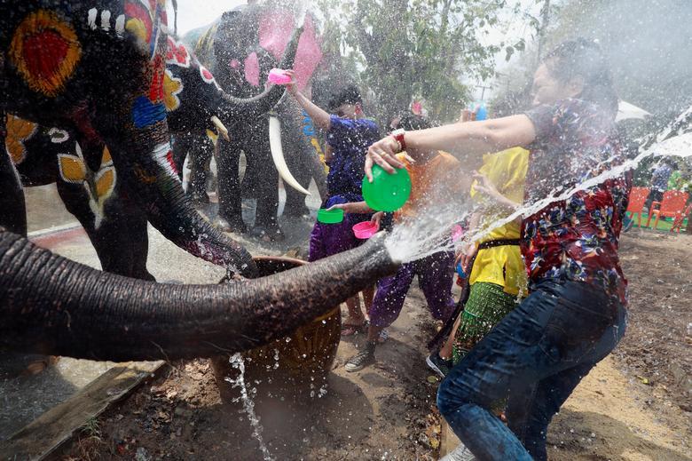 Слоны и люди играют с водой