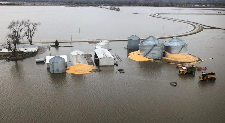Содержимое зернохранилищ