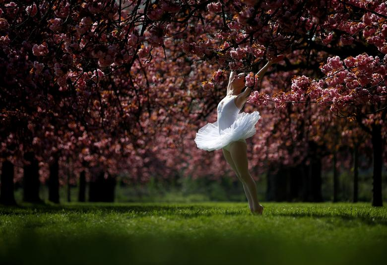 Танцовщица позирует