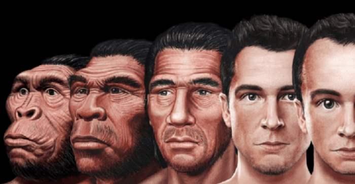 Ученые объяснили эволюцию человеческого лица