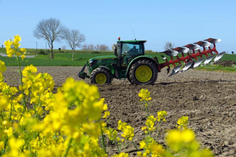 Фермер около поля рапса